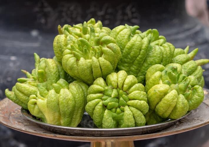 20190415-Vietnam-Buddhas-Hand-Fruit