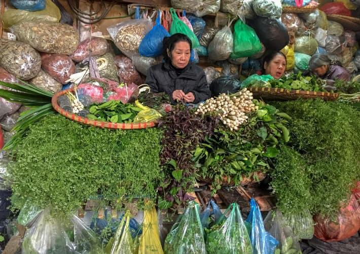 20190415-Vietnam-Vietnamesische-Apotheke-Markt