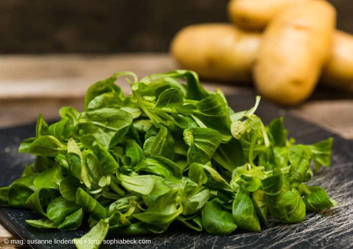 Vogerlsalat mit Kartoffeln im Hintergrund
