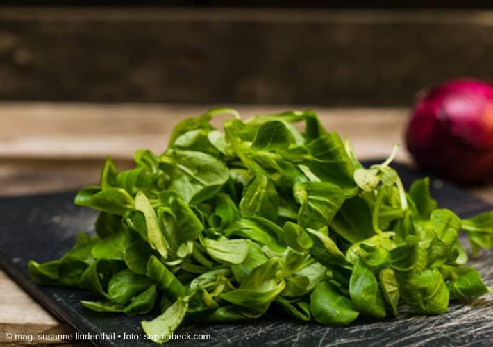 Vogerlsalat mit roter Zwiebel im Hintergrund