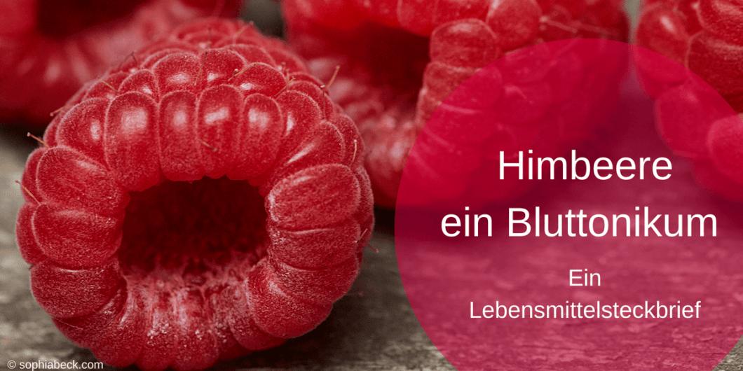 Himbeere ein Bluttonikum