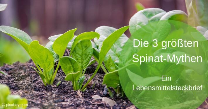 Spinat-Mythen-Titel