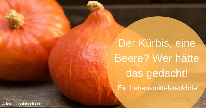 Kürbis-Panzerbeere-Lebensmittelsteckbrief-Titel