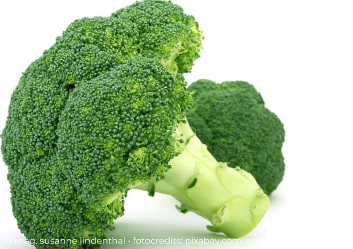 20210804-Laktoseintoleranz-Brokkoli-Calciumlieferant